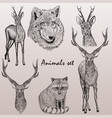 collection of high detailed animals for design vector image