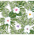 exotic white flowers hibiscus and green leaves vector image vector image