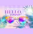 hello summer bright background with frame vector image