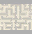 intricacy labyrinth maze seamless pattern vector image vector image