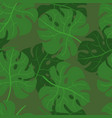 monstera leaves seamless pattern texture vector image