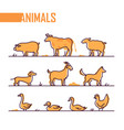 set farm animals - line design style colorful vector image