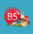 vitamin b5 pantothenic acid vector image