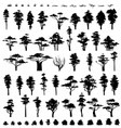 Nature trees Trees silhouettes isolated on white vector image