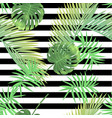 beautiful tropical abstract color and green palm vector image vector image