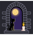 castle window with black cat and candle night