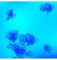 flower rose blossom bloom floral background summer vector image