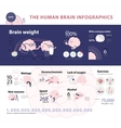 Human brain infographic 2 vector image vector image