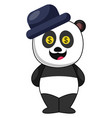 panda with blue hat on white background vector image vector image
