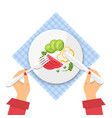 plate of fresh vegetable salad on tablecloth vector image