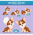 Small brown dog with food in different poses vector image