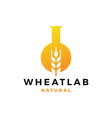 wheat lab logo icon vector image