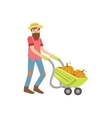 Bearded Man Rolling A Wheel Barrel With Pumpkins vector image