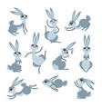 cartoon cute rabbit or hare little funny rabbits vector image vector image