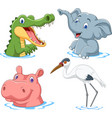 cartoon safari animal on water vector image vector image
