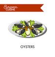 extotic oysters with salad leaves from european vector image vector image