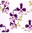 seamless texture stem orchid phalaenopsis vector image vector image