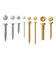 set of screws different types vector image vector image