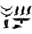 Set of heraldry black birds vector image