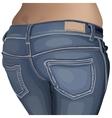 jeans female jeans girl female fashion young denim vector image
