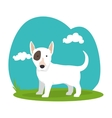 cute dog isolated icon vector image