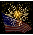 Independense Day of America vector image vector image