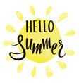 inscription hello summer on background the vector image vector image