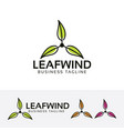 leaf wind logo design vector image