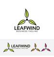 leaf wind logo design vector image vector image