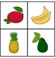 Mango BananaPineappleAvocado vector image vector image