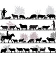 herd of sheep vector image vector image