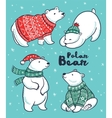 Polar Bears collection in red and green sweater vector image