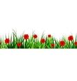 Green Grass seamless poppy vector image vector image