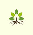 leaves tree naturally ecology logo vector image vector image