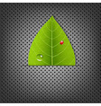 Metal Background With Green Leaf vector image vector image