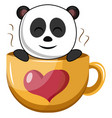 panda in big cup on white background vector image vector image