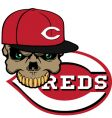 reds baseball vector image vector image