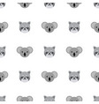 seamless pattern with cute koala and raccoon vector image vector image
