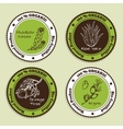 Set of Natural Organic Product badges vector image