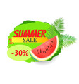 summer watermelon discount vector image vector image