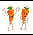 cheerful and angry emotional vegetable vector image vector image