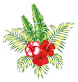 floral tropical composition white background vector image vector image