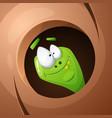 funny cute crazy cartoon worm nuts vector image vector image