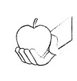 hand holding fresh apple food vector image