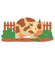 spotted cow near fence and green bushes vector image vector image