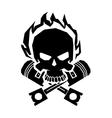 Winged black skull mask in helmet wings of fire vector image