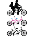 Two-seater bike vector image
