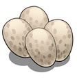 eggs reptiles isolated on white background vector image vector image