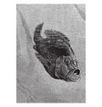 hussar fish and young vintage vector image vector image