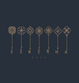 modern graphic key collection gray vector image vector image
